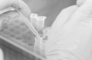 El innovador medicamento contra el cáncer, que evita que las células tumorales se expandan y causen metástasis. Foto: EFE.
